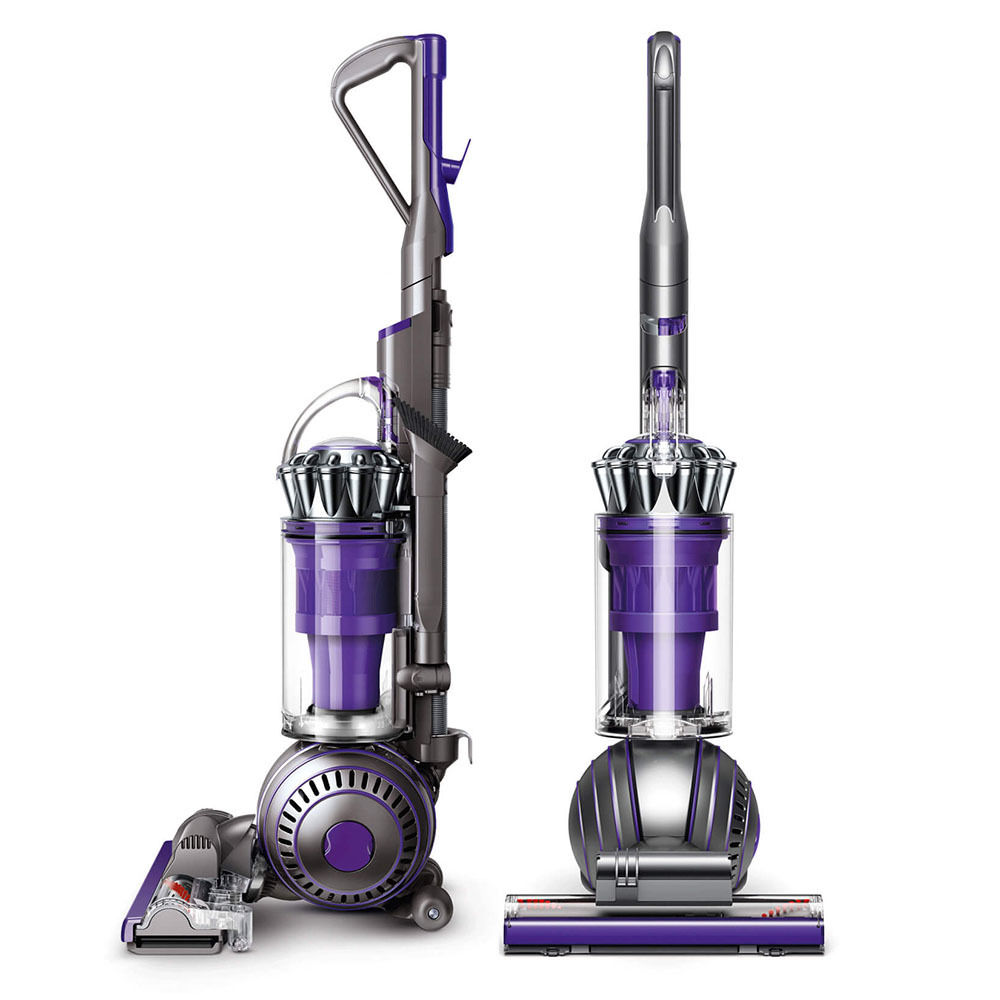 animal upright dyson