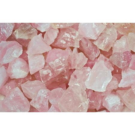 Fantasia Crystal Vault: 1 lb Rose Quartz Rough Stones from Madagascar - Large 1