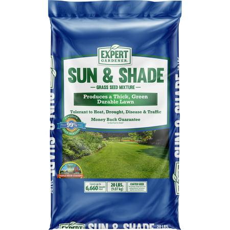 Expert Gardener Sun & Shade Grass Seed Southern Mix; 20 lb.