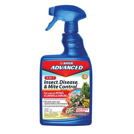 Bayer Advanced 3-In-1 Insect & Disease Killer (Bayer Systemic Insecticide)