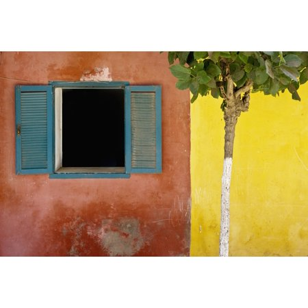 A Tree Outside A Colorful Building And A Window With Blue Shutters Dakar Senegal Canvas Art - David DuChemin  Design Pics (38 x 24)