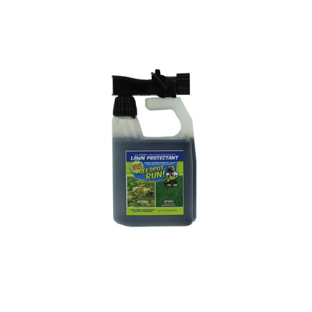 See Spot Run Lawn Protectant   Cures And Prevents Dog Urine Spots  Safe  Effective  Natural Lawn Care Product And Excellent Grass Saver For Pets To Aid Your Lawn Fertilizer  32Oz Hose End Concentrate