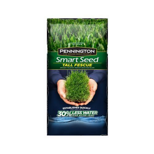 Pennington 100526677 7-Lb. Smart Seed Fescue Blend