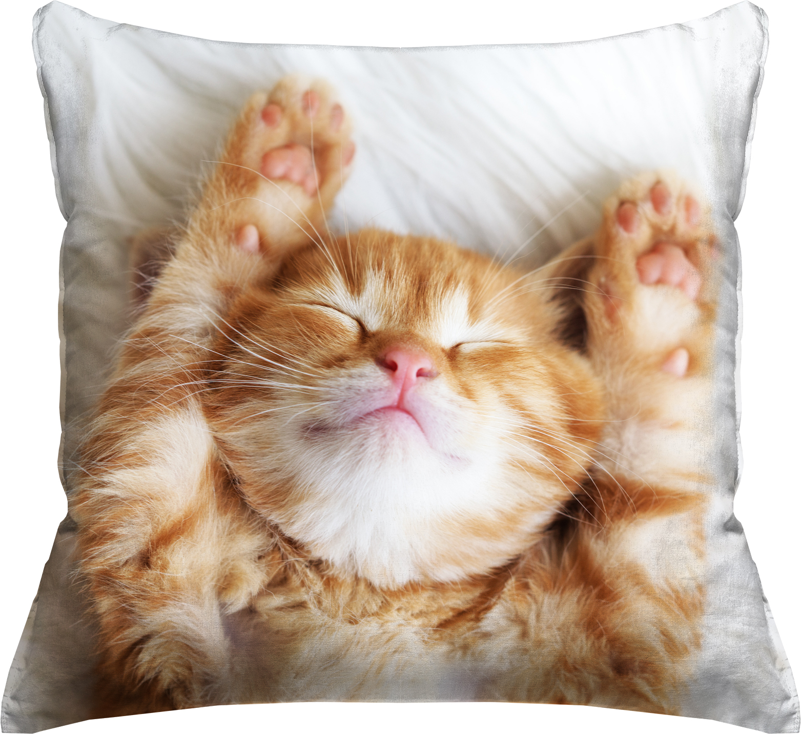 Photo Real Orange Tabby Cat Throw Pillow