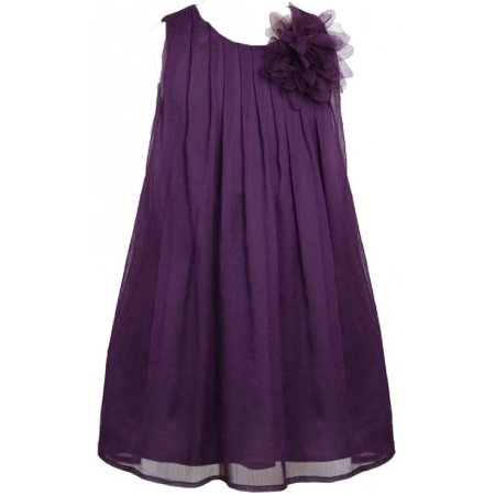 Little Girls Chiffon Ruched Neckline A-Line Party Flower Girl Dress Plum 2 (Size 2-12) (Plumb Dress)