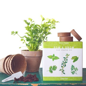 Nature's Blossom Herb Garden Kit - 5 Herbs to Grow From Seed