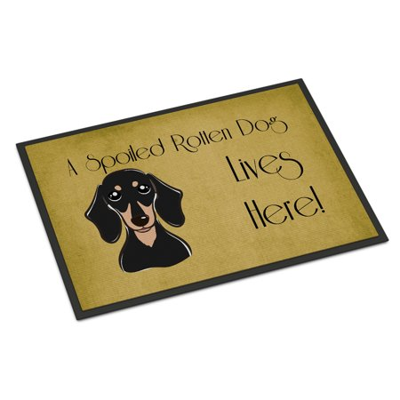 Black And Tan Dachshund (Smooth Black and Tan Dachshund Spoiled Dog Lives Here Door)