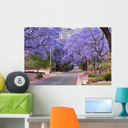 jacaranda trees wall decalwallmonkeys peel and stick graphic (36