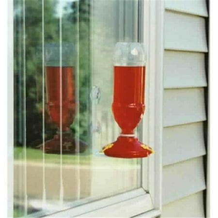 Soda Bottle Window Hummingbird Feeder