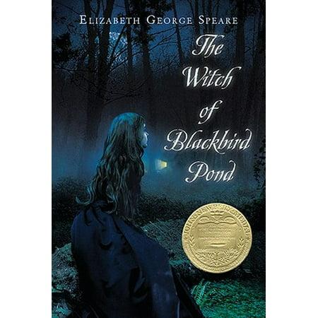 The Witch of Blackbird Pond (Paperback) - Glenda The Good Witch