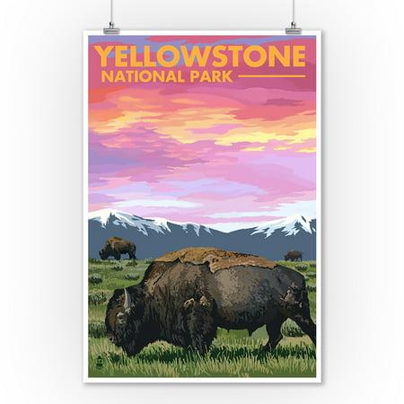 Yellowstone National Park, Wyoming - Bison & Sunset - Lantern Press Artwork (9x12 Art Print, Wall Decor Travel Poster) Sunset Yellowstone National Park