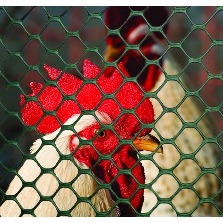 Tenax Poultry Fence; Black, 4 X 50 Feet ()