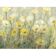 Summer in Bloom II Yellow and White Flower Painting Poppies Print Wall Art By Tim O'toole