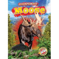 Animals of the Forest: Moose (Hardcover)