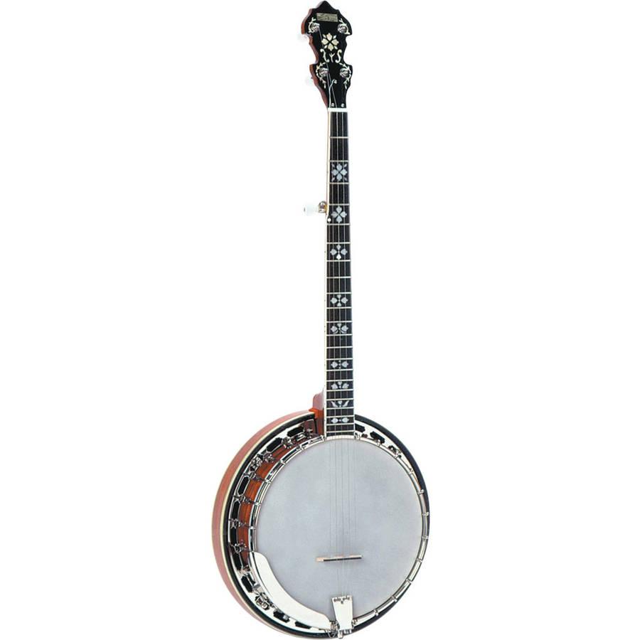 recording king songster professional resonator 5 string banjo rk r20. Black Bedroom Furniture Sets. Home Design Ideas
