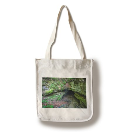 Mammoth Cave, Kentucky - Cave Entrance 2 - Lantern Press Photography (100% Cotton Tote Bag -
