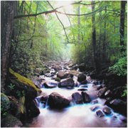 """Oriental Furniture River of Life Canvas Wall Art, 19.75""""H, wall décor, living area"""