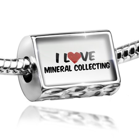 Bead I Love Mineral Collecting Charm Fits All European Bracelets