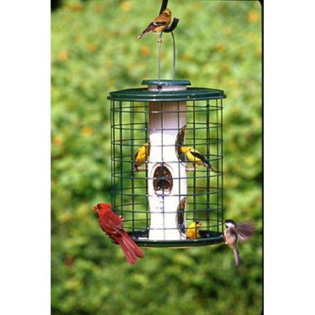 Vari-Crafts Mixed Seed Bird Feeder (Squirrel Proof Plants)