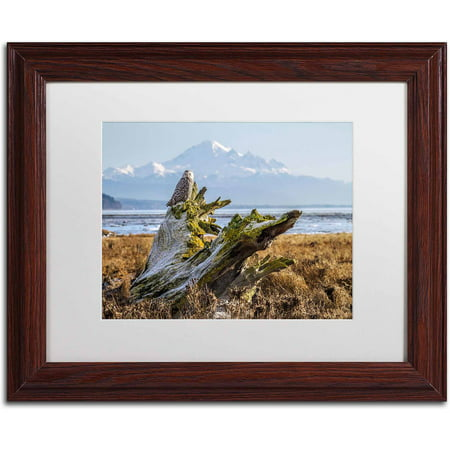 "Trademark Fine Art ""Snowy Owl"" Canvas Art by Pierre Leclerc, White Matte/Wood Frame"