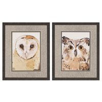 Paragon Owls I Framed Wall Art - Set of 2