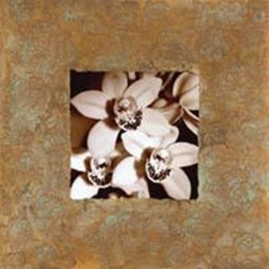 Orchids on Copper Poster Print by Mark Baker (20 x 20)