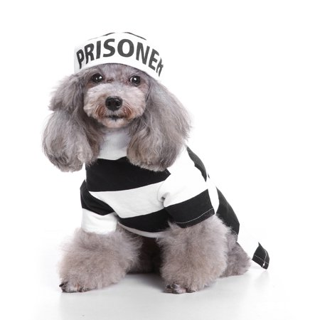 Cute Halloween Cool And Cute Pet Cosplay Costume Dog Pet Costume Clothing - Cool Halloween Appetizers