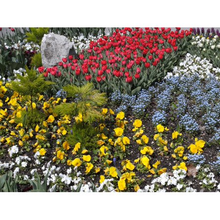 LAMINATED POSTER Discounts Flowers Color Bed Flower Bed Poster Print 24 x 36 (Discount Beads)