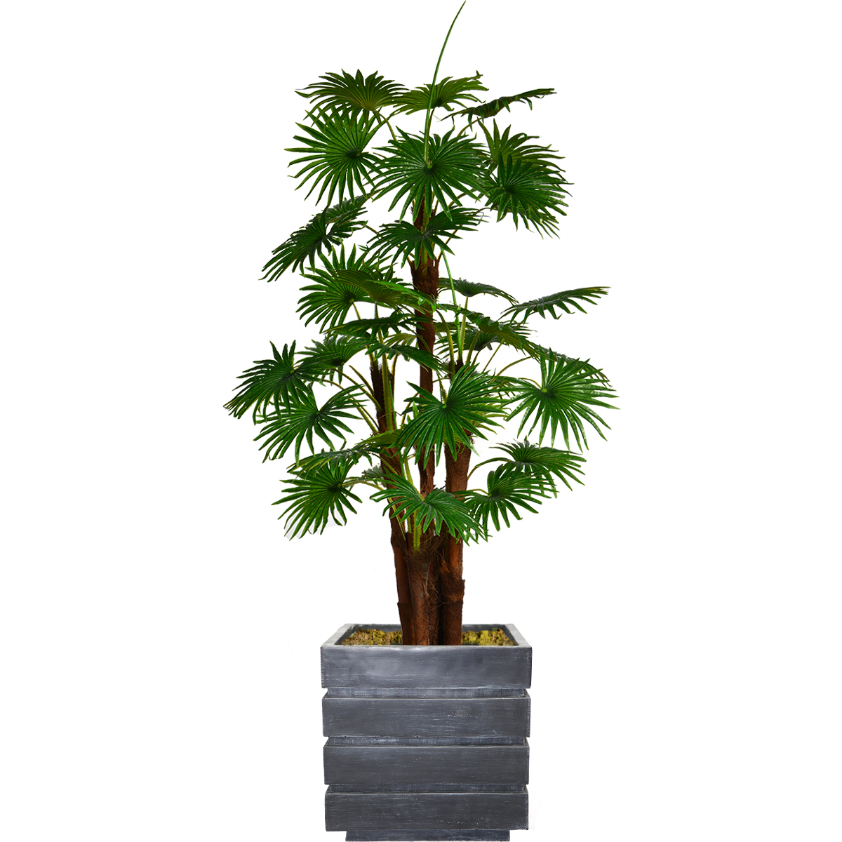 """72"""" Tall Fan Palm Tree Artificial Indoor/ Outdoor Décor Faux Burlap Kit and Fiberstone Planter By Minx NY"""