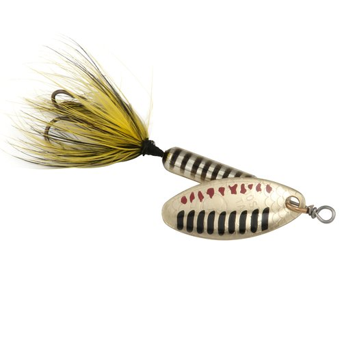 Worden 1/6 oz Rooster Tail Lure, Metallic Gold Black