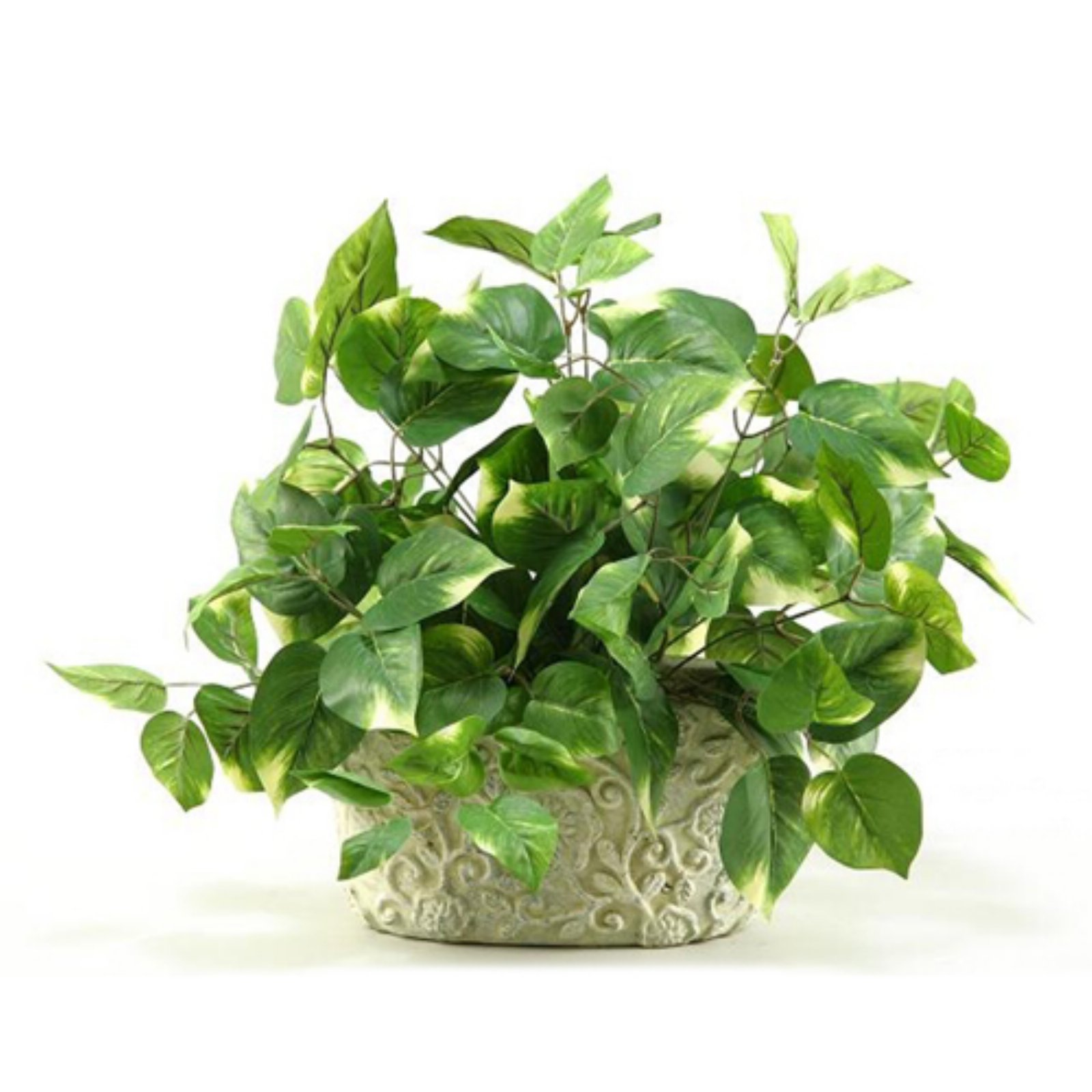D&W Silks Pothos in Oblong Ceramic Planter