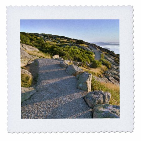 3dRose Maine Acadia National Park, Cadillac Mountain trail - US20 RKL0017 - Raymond Klass - Quilt Square, 6 by 6-inch Cadillac Mountain Acadia National Park