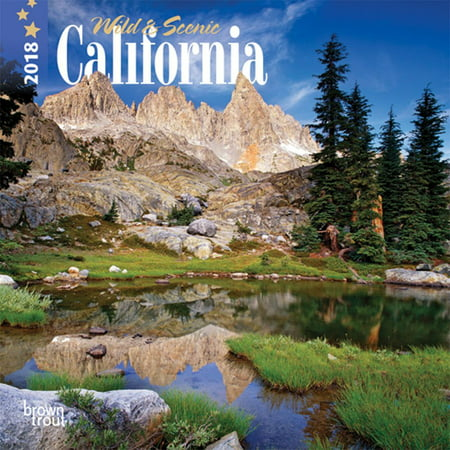 California  Wild   Scenic 2018 7 X 7 Inch Monthly Mini Wall Calendar  Usa United States Of America Pacific West State Nature