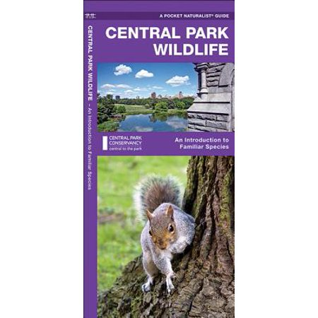 Central Park Wildlife : A Folding Pocket Guide to Familiar Species