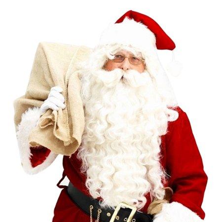 Santa Claus Wig + Beard Set Costume Accessory Adult Christmas Fancy Dress - Wig Set
