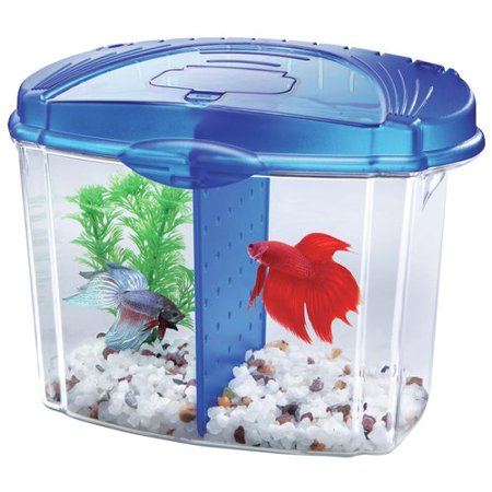 Aqueon 0.5 Gallon Betta Bowl Desktop Aquarium Kit