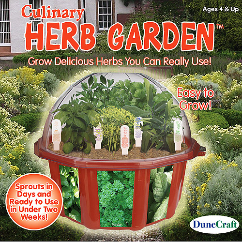 DuneCraft Culinary Herb Garden Kit