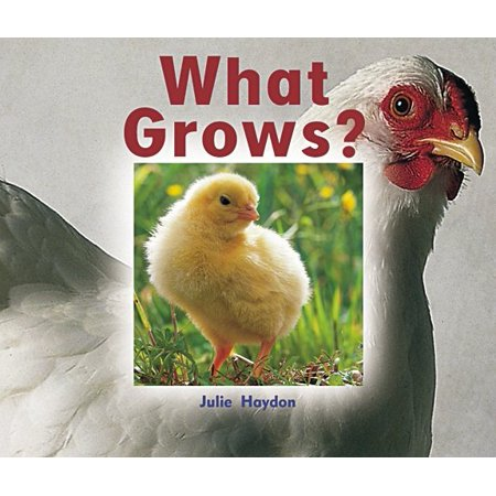 Rigby Focus Emergent : Leveled Reader What Grows?