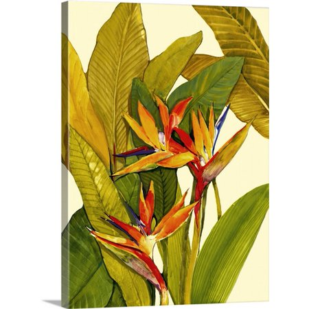 Great BIG Canvas Tim O'Toole Premium Thick-Wrap Canvas entitled Tropical Bird of Paradise