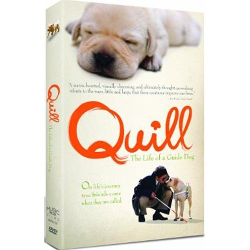Quill: The Life Of A Guide Dog (Japanese)