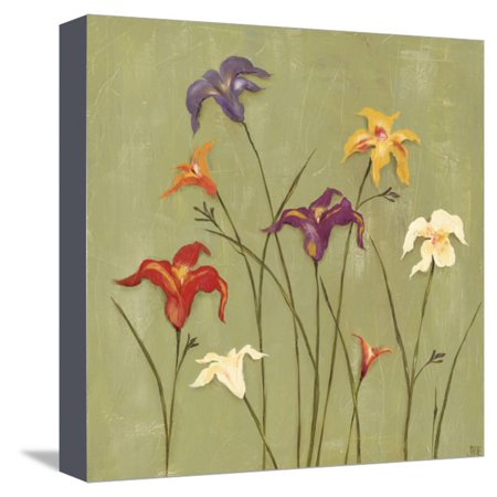 Jeweled Lilies II Stretched Canvas Print Wall Art By Jade Reynolds