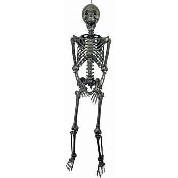 Posable Skeletons (60