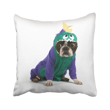 Puppy Dinosaur Costumes (WOPOP White Dog Boston Terrier In Dinosaur Costume Pet Puppy Suit Nose Animal Baby Canine Pillowcase Pillow Cover 20x20)