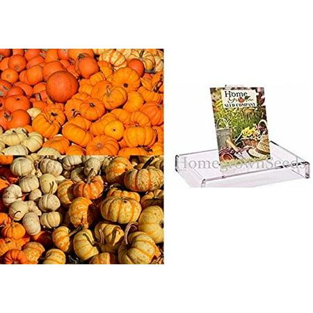 Homegrown Pumpkin Seeds, 180, Spookie Pumpkin Mix, 6 Pumpkin Types