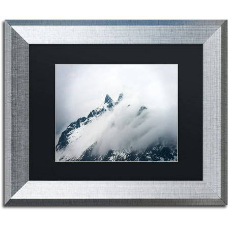 "Trademark Fine Art ""Come Fly With Me"" Canvas Art by Philippe Sainte-Laudy, Black Matte, Silver Frame"
