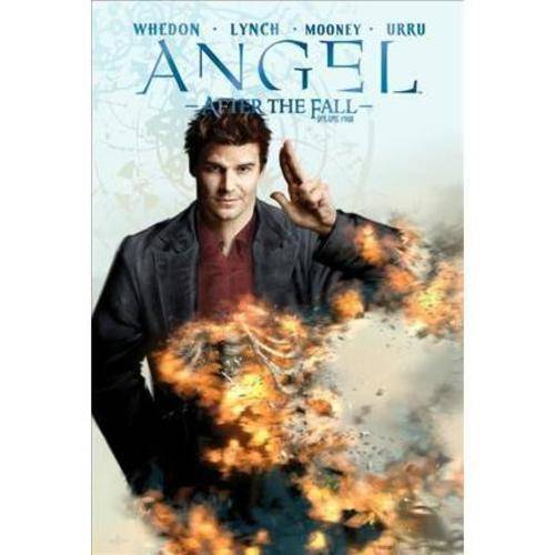 Angel: After the Fall 4