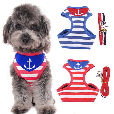 Yosoo Pet Chest Vest, Fashion Soft Adjustable Walking Strap Vest With Lead Leash for Small Dogs Cats Puppy Kitten Training Running Hiking Harness Set