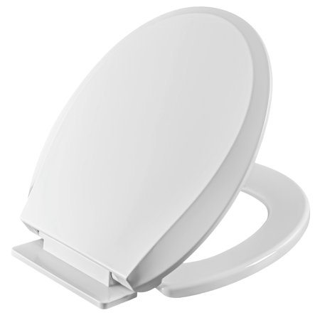 Sensational Winfield Heavy Duty Durable Plastic Round Front Slow Close Toilet Seat With Hassle Free Installation Kit Easy Clean Hinges Quiet Close Seat For Squirreltailoven Fun Painted Chair Ideas Images Squirreltailovenorg