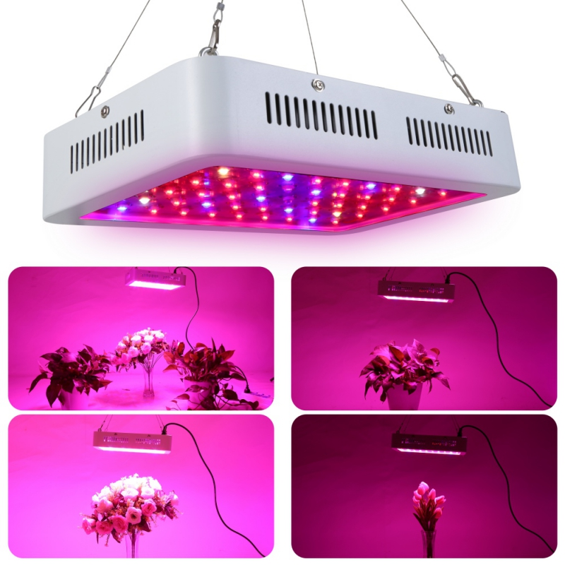 600w Double Chips Led Grow Light Full Spectrum with UV and IR for Greenhouse and Indoor Plant Flowering Growing