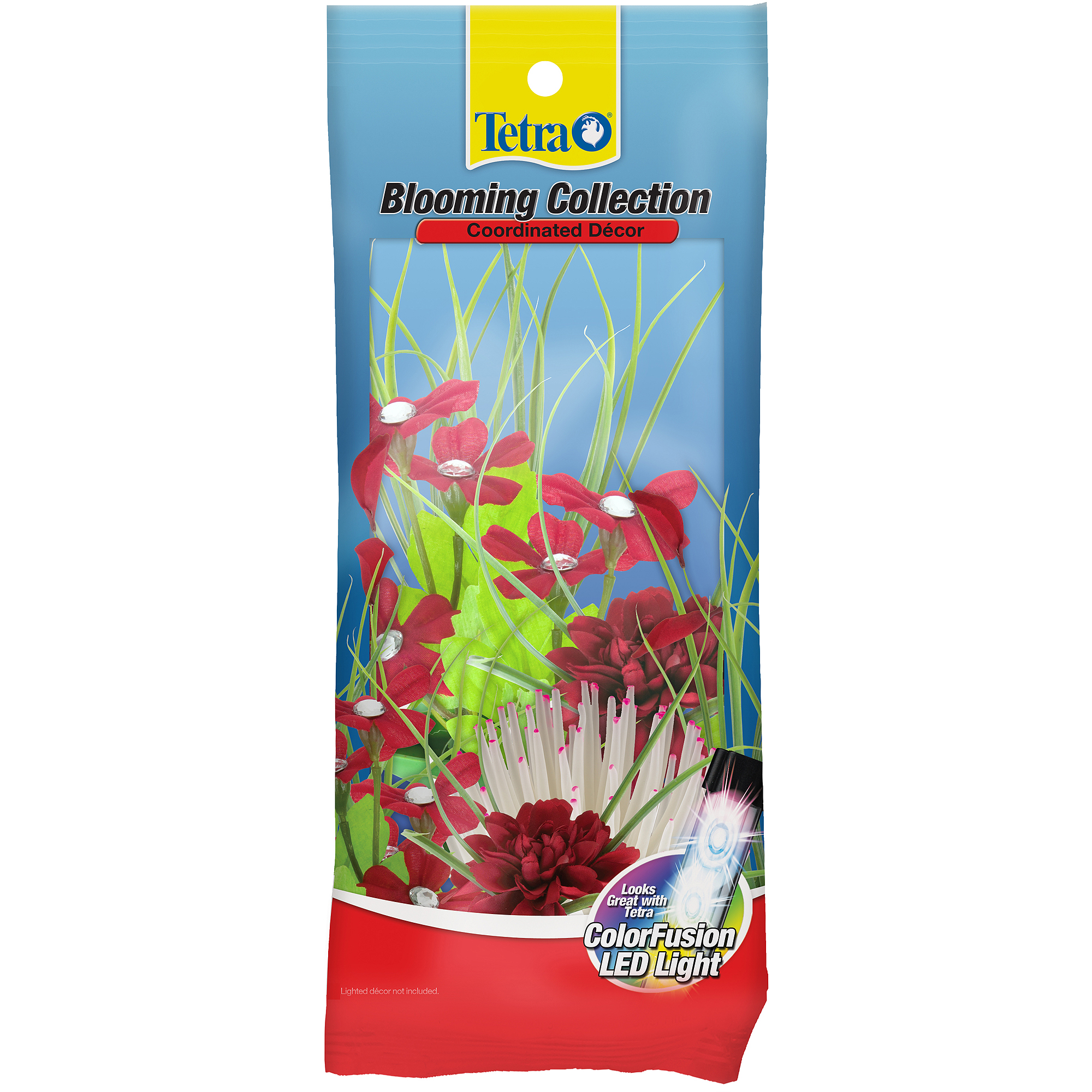 Tetra Blooming Collection Plant, 4-Pack
